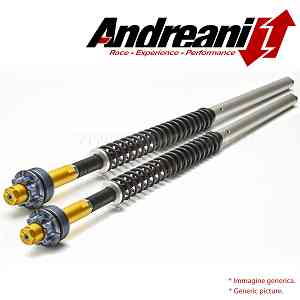 Andreani Adjustable Misano Hydraulic Cartridge Kit for Yamaha XJ 6 {{year_system}}