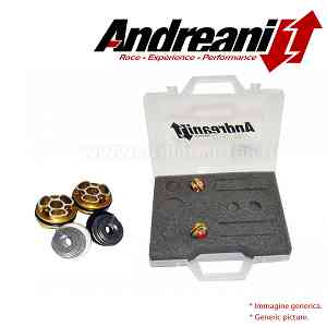 Andreani Compression Pistons Kit for Ducati Monster S4 2001 > 2005
