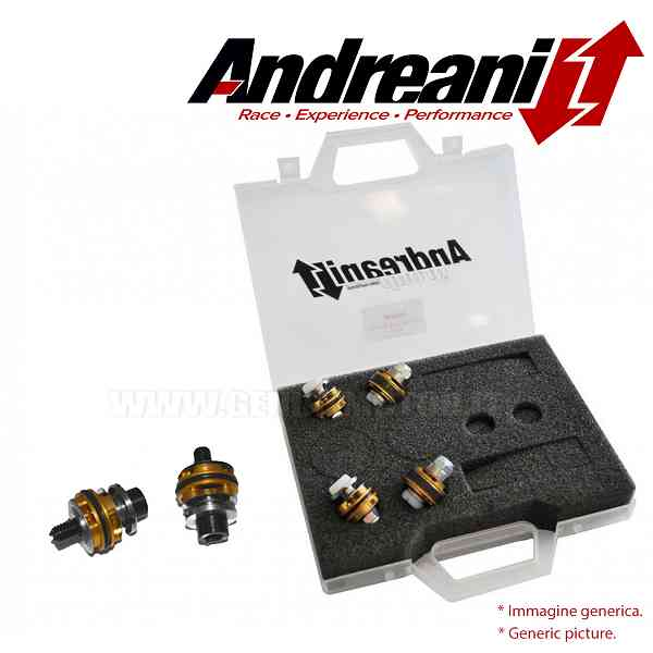 Andreani Compression and Rebound Fork Pistons Kit for Aprilia RS 250 1998 > 2002